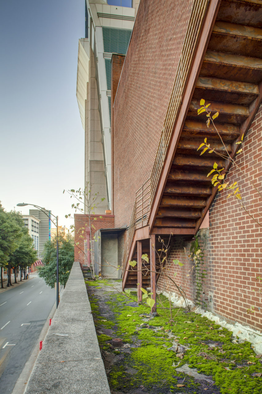 An unofficial greenspace on the lower roof